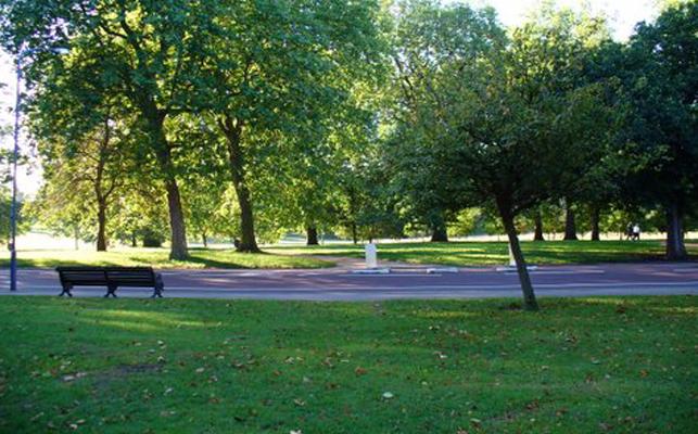 Паркът на  града Park1
